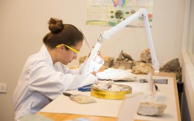 Wissenschaftlerin bei der Arbeit (Foto: brendageisse – pixabay.com)